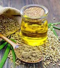 maščobne kisline omega 3